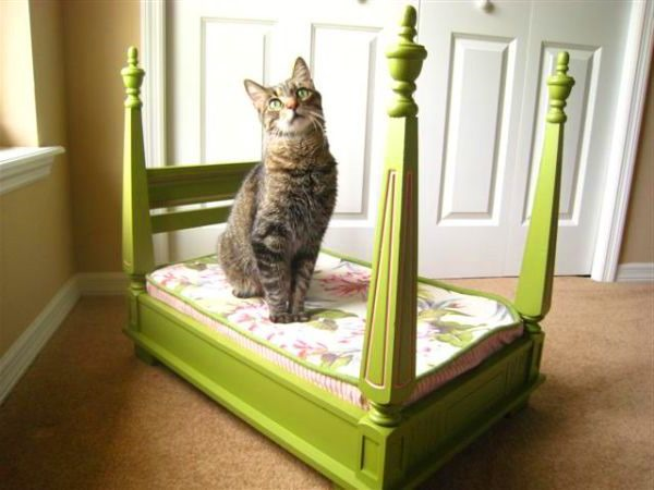 Green-Lovely-Pet-Bed