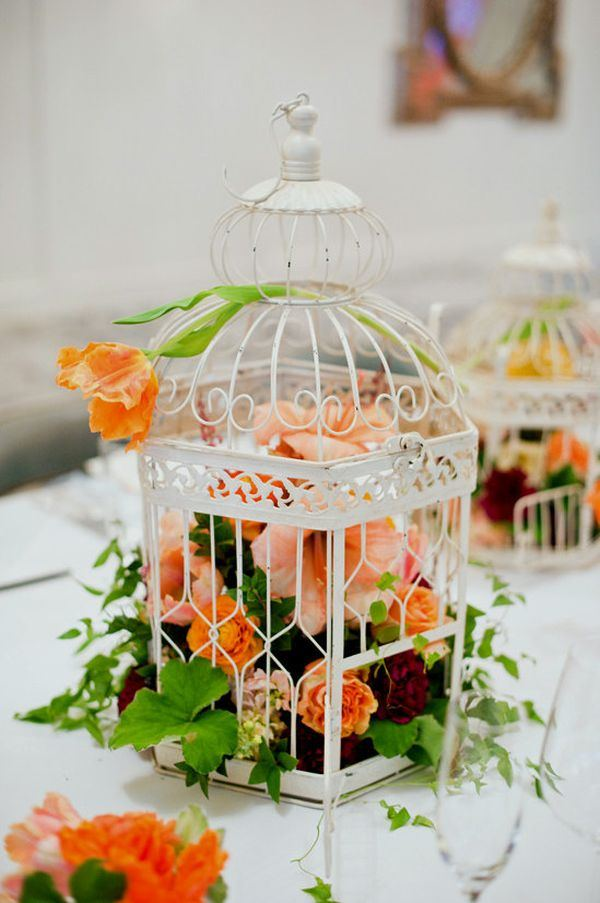 decorative-bird-cages