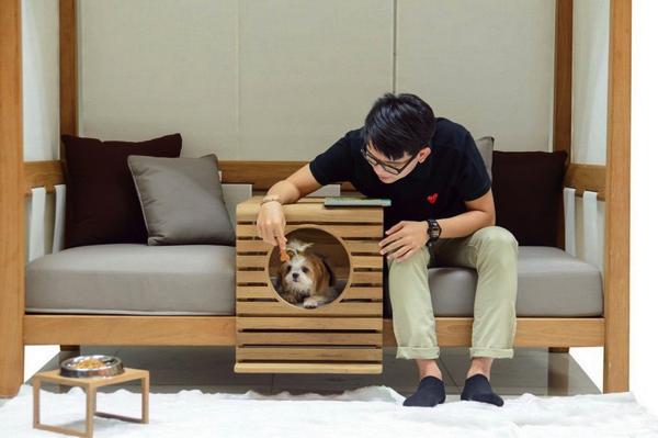 これ欲しい!ペットと座れる機能的ソファがすごく良さそう!